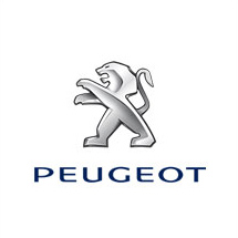 Auto Incidentate Peugeot